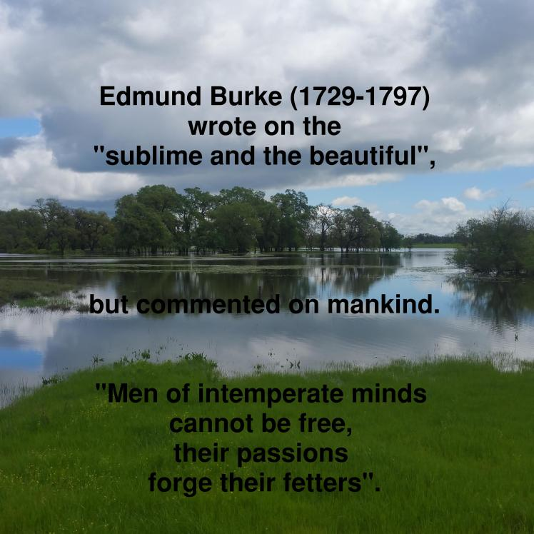 burke-intempere minds